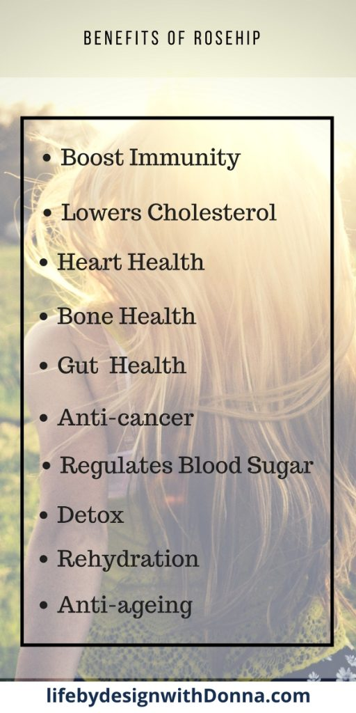 A list of the benefits of Rosehip